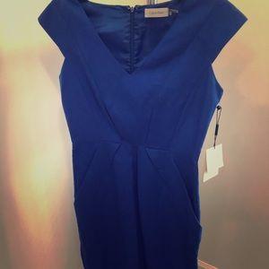 NWT Calvin linen dress 2